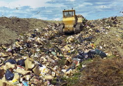 bulldozer_in_landfill